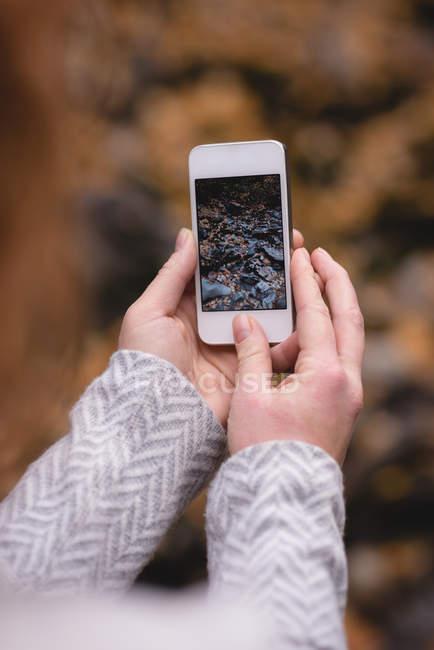 Nahaufnahme von Frau Herbst Foto in ihrem Handy betrachten — Stockfoto