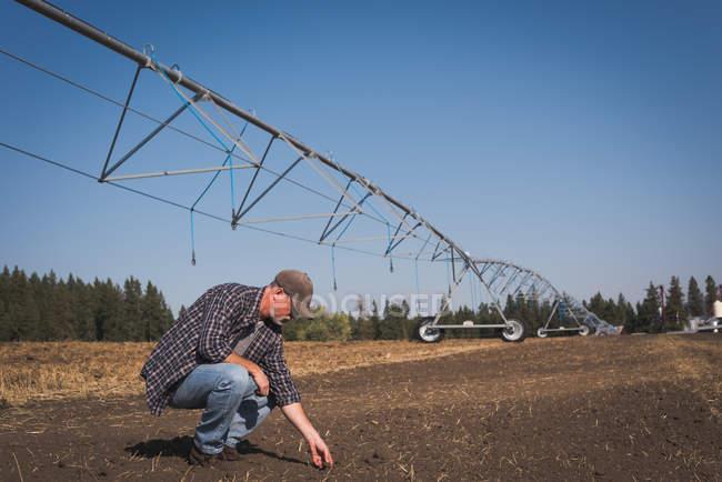 Fermier vérifiant sol fertile dans le champ par une journée ensoleillée — Photo de stock