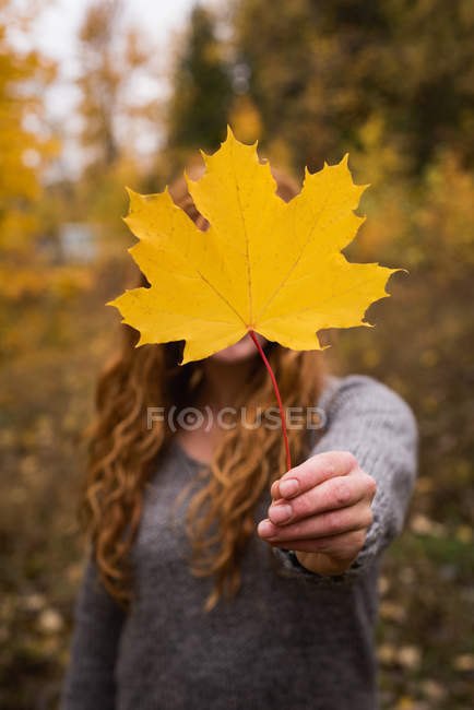 Frau mit einem Herbst-Ahornblatt im Wald — Stockfoto