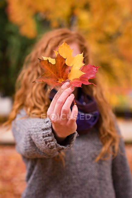 Woman showing red, yellow and brown maple leaves in the autumn park — Stock Photo