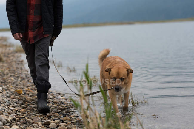 Low section of man and his pet dog walking at river bank — Stock Photo