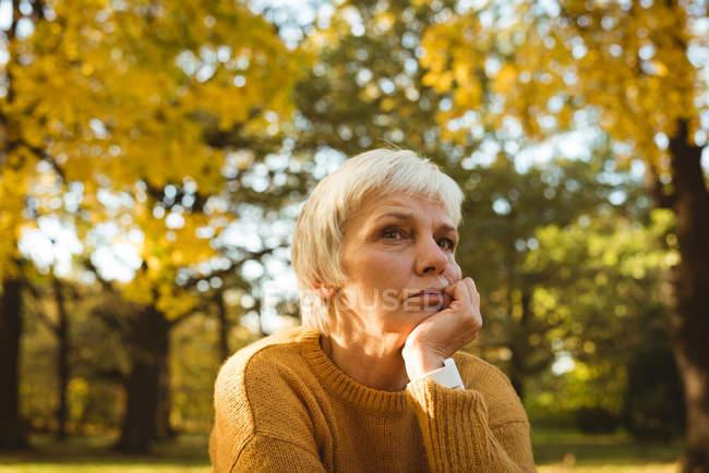 Mulher idosa atenciosa em um parque em um dia ensolarado — Fotografia de Stock