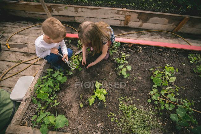 Two little kids planting seed in greenhouse — Stock Photo