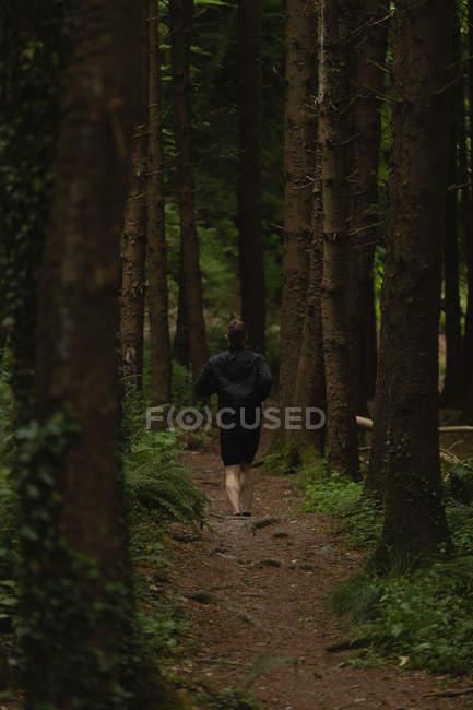 Vista posteriore dell'uomo che fa jogging sul sentiero forestale — Foto stock