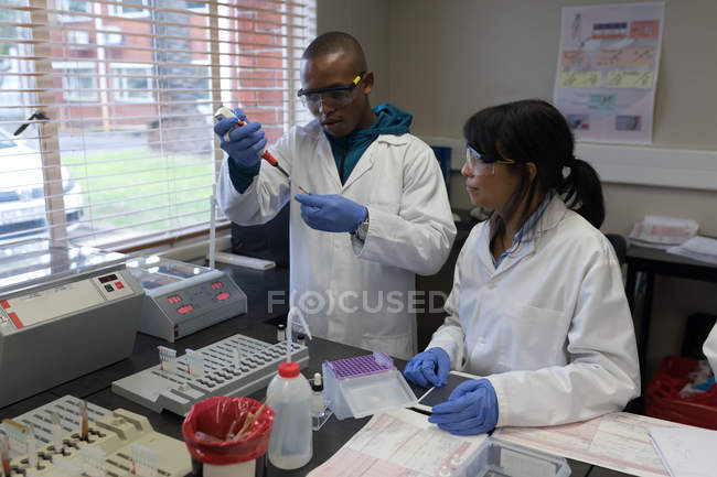 Laboratory technicians analyzing blood sample in blood bank — Stock Photo