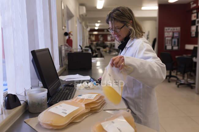 Labortechniker hält Plasmasäcke in Blutbank — Stockfoto