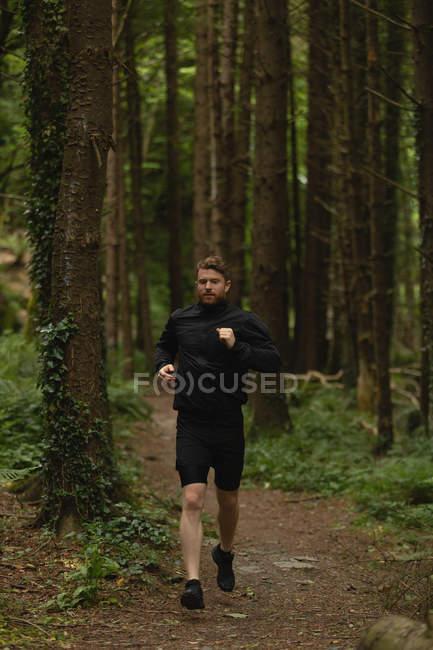 Молодой человек бегает по лесной тропинке — стоковое фото