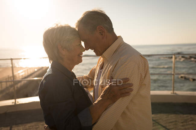 Romantic senior couple standing at promenade on a sunny day — Stock Photo