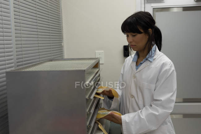 Laboratory technician placing plasma bags in cabinet at blood bank — Stock Photo