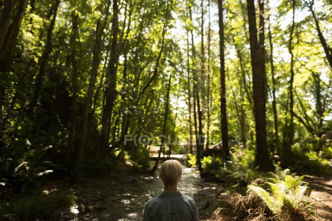 Vista posteriore della donna in piedi nella foresta — Foto stock
