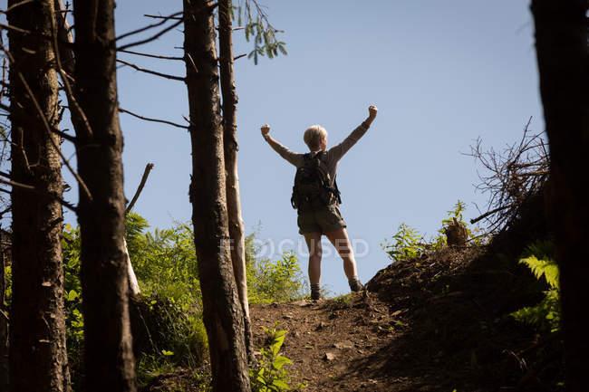 Vista traseira da mulher em pé com os braços na floresta — Fotografia de Stock