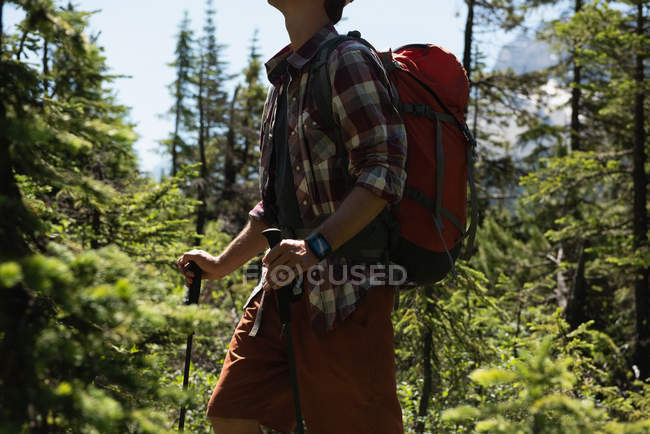 Mid section of man walking with hiking pole at countryside — Stock Photo
