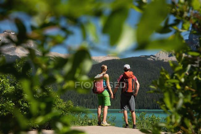 Vue arrière du couple debout la main dans la main près de la rivière — Photo de stock