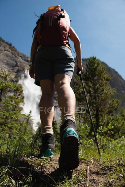 Vista traseira da mulher caminhando na zona rural — Fotografia de Stock