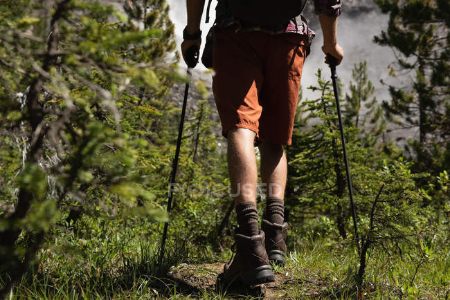 Low section of man walking with hiking pole at countryside — Stock Photo