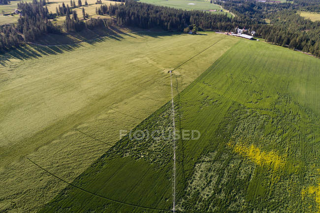 Aerial view of green field at countryside — Stock Photo
