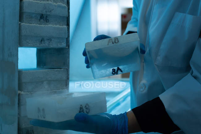Mid section of female scientist removing ice cube in laboratory — Stock Photo