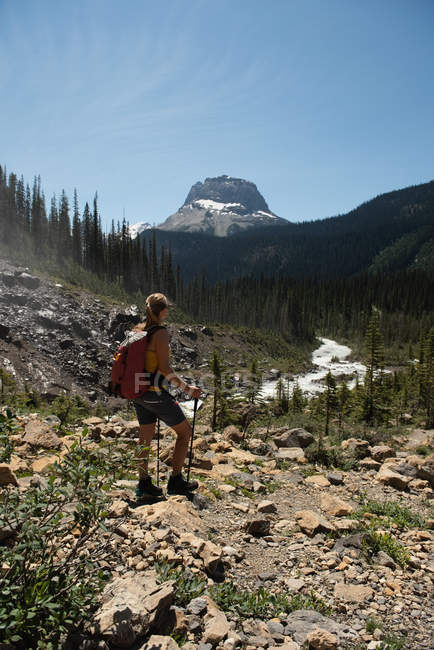 Female hiker standing on a mountain in mountains — Stock Photo