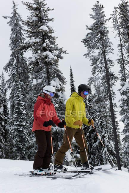 Лыжник пара, покататься на лыжах на снежный пейзаж зимой — стоковое фото