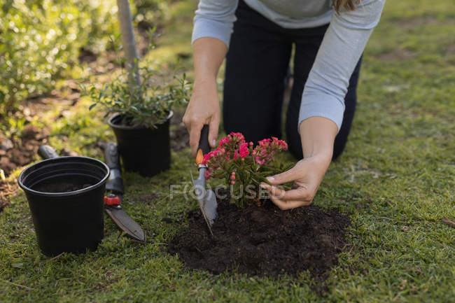Mid section of mother planting in garden on a sunny day — Stock Photo