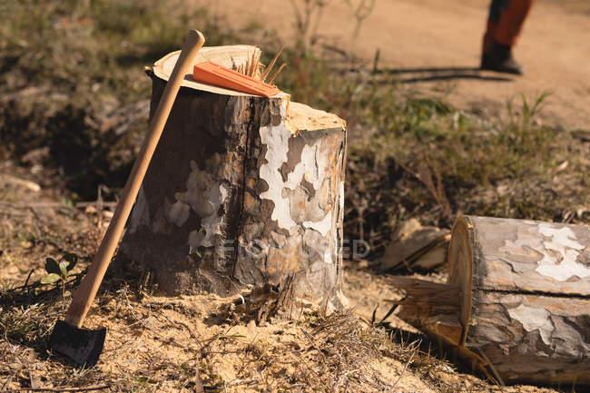 Souche d'arbre et hache dans la forêt à la campagne — Photo de stock