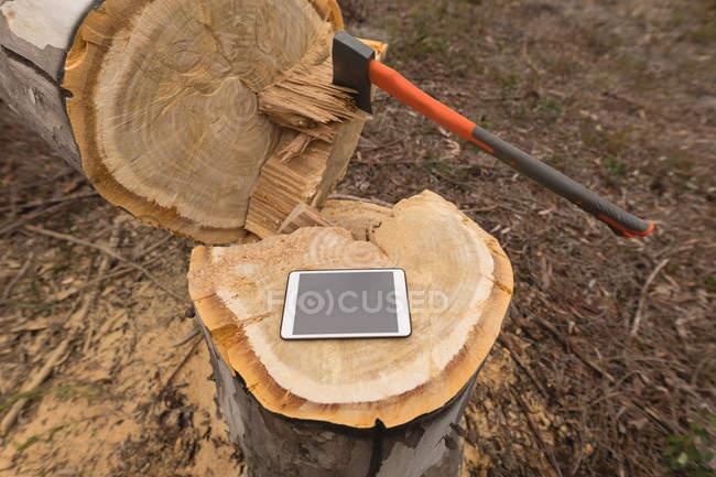 Gros plan de la tablette numérique sur tronc d'arbre en forêt — Photo de stock