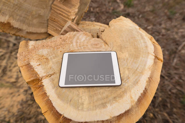 Close-up of digital tablet on tree stump in forest — Stock Photo