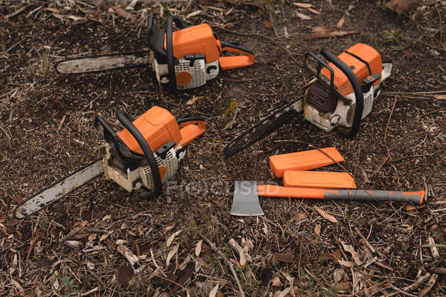 Lumberjack tools arranging in the forest at countryside — Stock Photo
