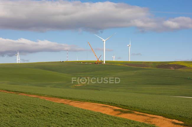 Moinho de vento em paisagem verde em um dia ensolarado — Fotografia de Stock