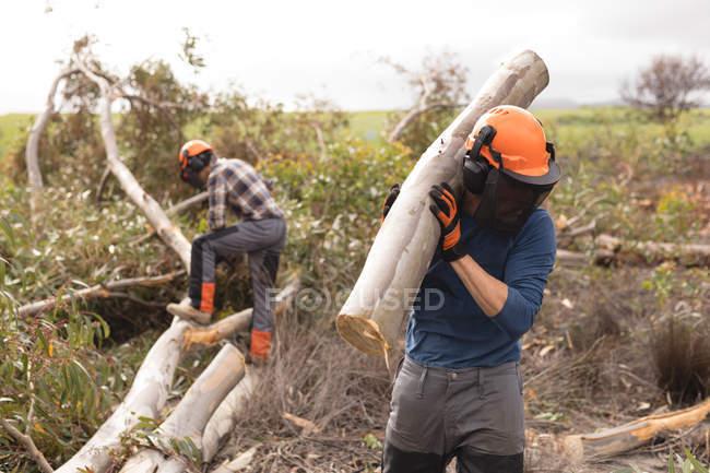 Lumberjack carregando tronco de madeira na floresta — Fotografia de Stock