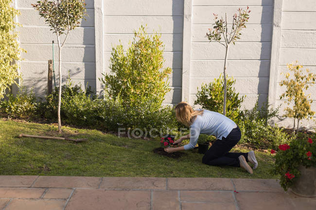 Side view of woman planting in garden on a sunny day — Stock Photo