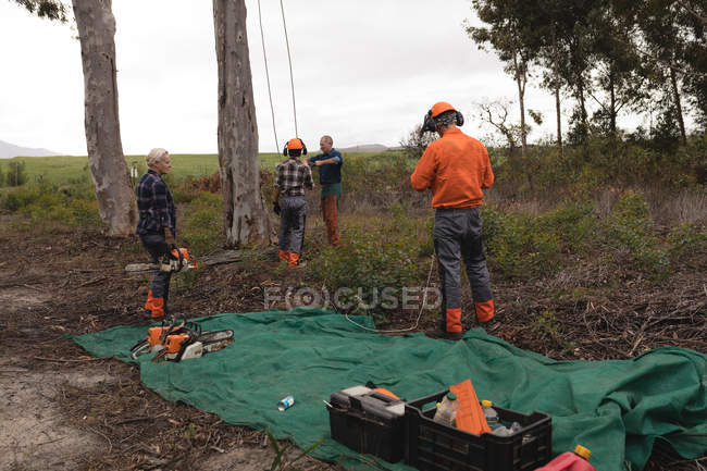 Lumberjack workers working together in forest — Stock Photo