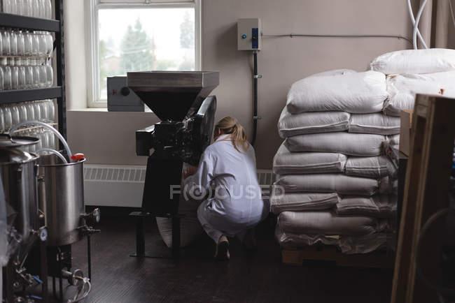 Female worker putting wheat in wheat crusher machine at factory — Stock Photo