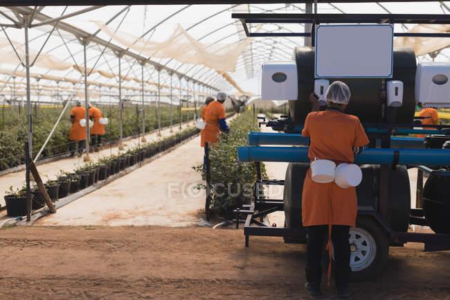 Працівників, що працюють в сучасних Чорниця ферма — стокове фото