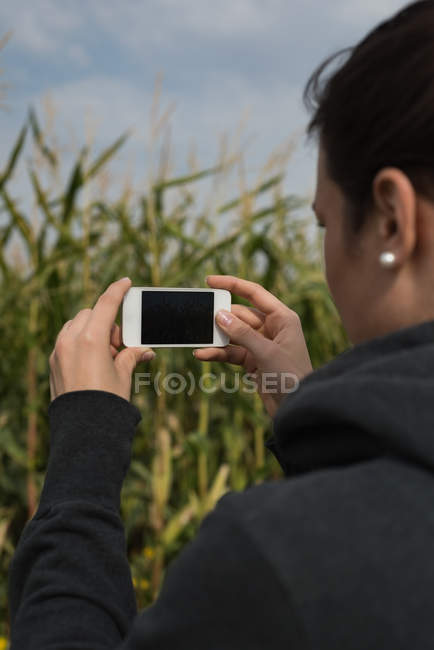 Close-up of woman clicking photos with camera in the field — Stock Photo