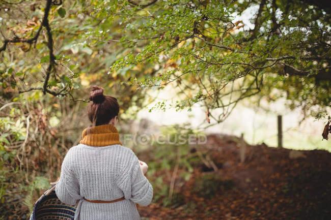 Вид сзади женщины с корзиной, идущей по зеленому полю — стоковое фото