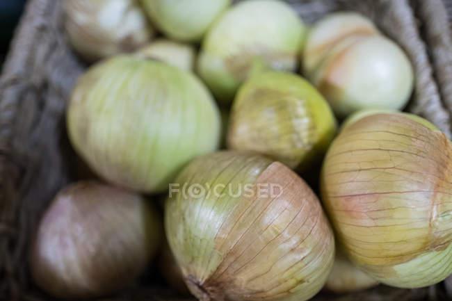 Close-up de cebolas frescas na cesta de vime — Fotografia de Stock