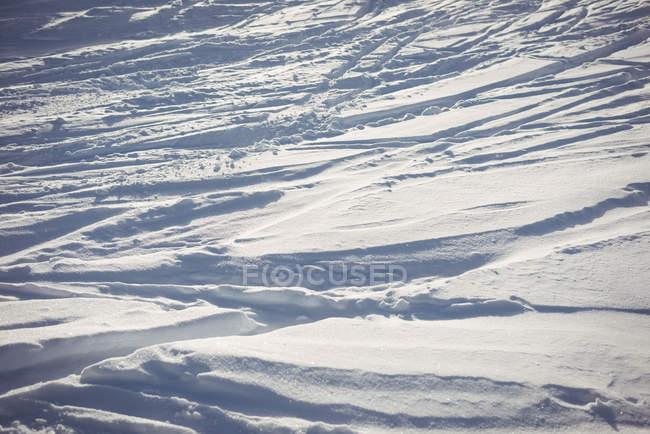 Vista de neve cobriu paisagem durante o inverno — Fotografia de Stock
