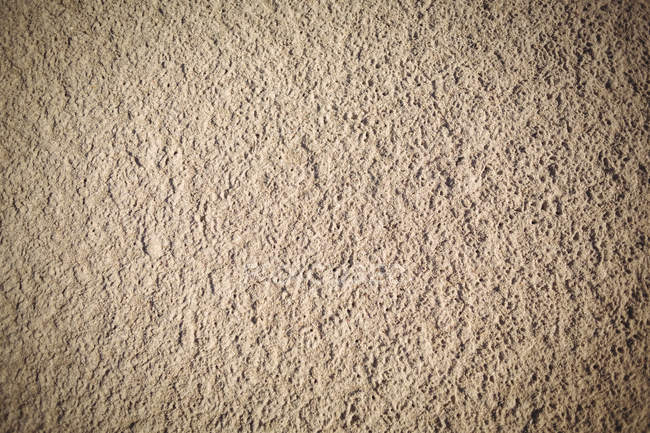 Close-up of natural beige beach sand texture — Stock Photo