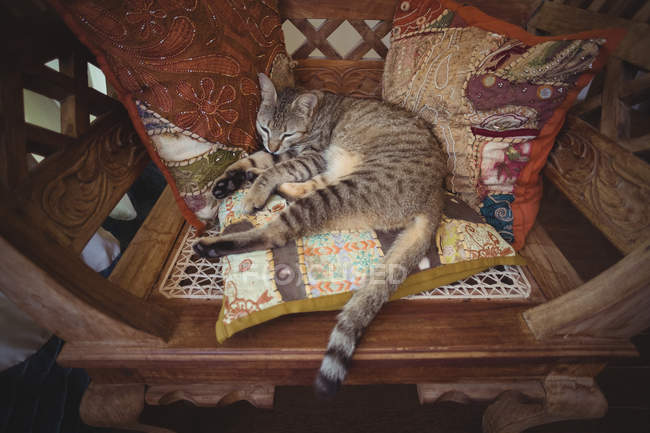 Tabby cat resting on a wooden chair with decorative pillows — Stock Photo