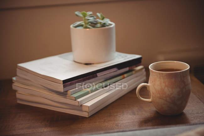 Tasse à thé et plante maison sur pile de livres sur la table dans le salon à la maison — Photo de stock