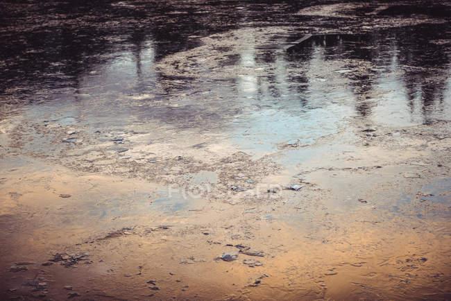Superficie dell'acqua del fiume congelata nei boschi in inverno — Foto stock