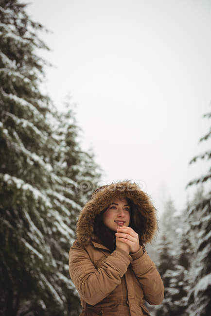 Beautiful woman in warm clothing warming hands during winter — Stock Photo