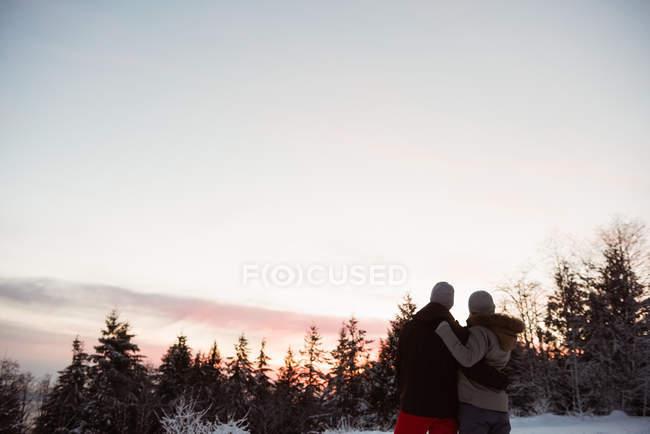 Вид сзади на лыжную пару, стоящую на заснеженной горе — стоковое фото