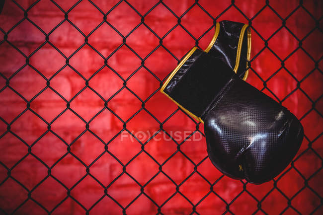 Luva de boxe pendurada na cerca de malha de arame no estúdio de fitness — Fotografia de Stock