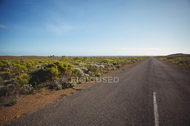 Rural scene of country road passing through green landscape — Stock Photo