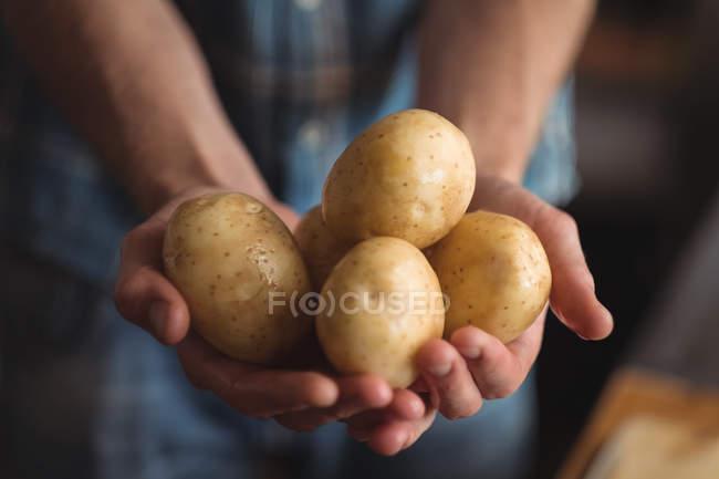 Close-up of hand holding fresh raw potatoes — Foto stock