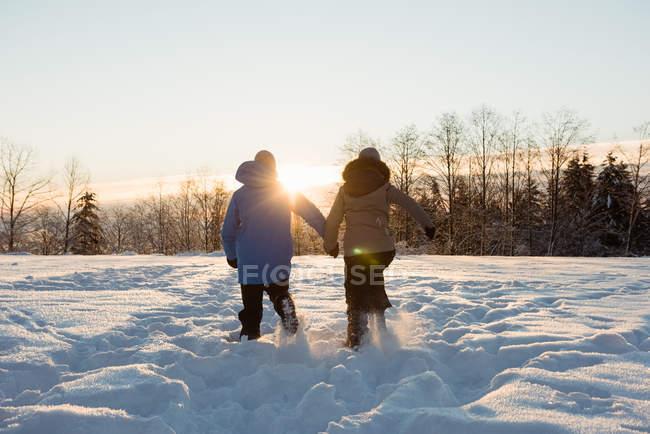 Vista traseira do casal caminhando sobre a neve cobriu paisagem — Fotografia de Stock