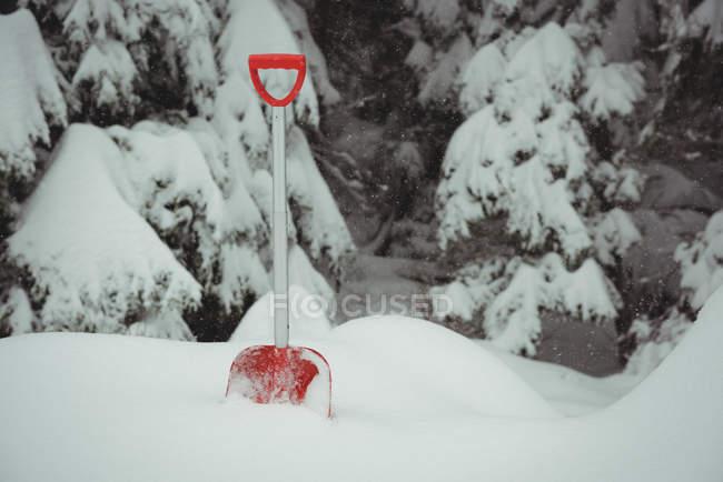 Pala en un paisaje nevado durante el invierno - foto de stock