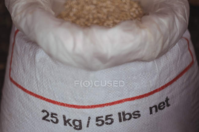 Close-up of a sack of barley to prepare beer at home brewery — Stock Photo